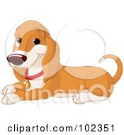 Royalty Free RF Clipart Illustration Of A Happy Basset Hound Dog Sitting by Pushkin