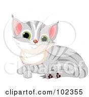 Royalty Free RF Clipart Illustration Of A Cute Gray Tabby Kitten Resting