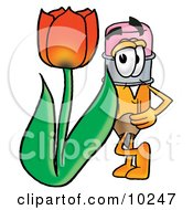 Pencil Mascot Cartoon Character With A Red Tulip Flower In The Spring by Toons4Biz