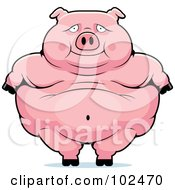 Royalty Free RF Clipart Illustration Of An Obese Pig Standing by Cory Thoman