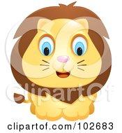Poster, Art Print Of Adorable Blue Eyed Lion