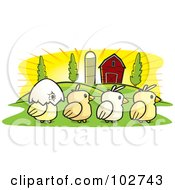 Royalty Free RF Clipart Illustration Of A Row Of Four Farm Chicks by Cory Thoman