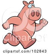Royalty Free RF Clipart Illustration Of A Running Pink Pig by Cory Thoman