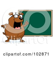 Royalty Free RF Clipart Illustration Of A Teacher Dog Pointing To A Chalk Board by Cory Thoman