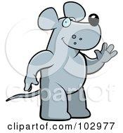 Friendly Rat Waving