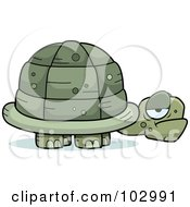 Royalty Free RF Clipart Illustration Of A Grouchy Old Tortoise by Cory Thoman