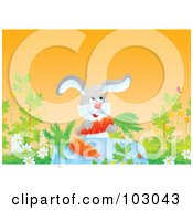 Royalty Free RF Clipart Illustration Of A Rabbit Dining On Carrots by Alex Bannykh