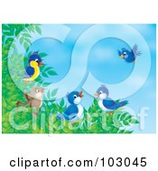 Royalty Free RF Clipart Illustration Of A Group Of Birds Gathering On A Tree Branch