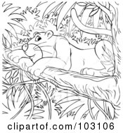 Royalty Free RF Clipart Illustration Of A Coloring Page Outline Of A Jaguar In A Tree
