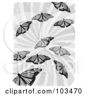 Royalty Free RF Clipart Illustration Of Grayscale Butterflies Over Grungy Swirls