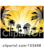 Royalty Free RF Clipart Illustration Of A Tropical Setting Sun With Orange Rays Silhouetting Palm Trees