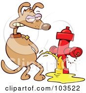 Mad Dog Looking Back And Urinating On A Red Fire Hydrant