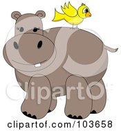 Royalty Free RF Clipart Illustration Of A Yellow Bird On A Hippos Back