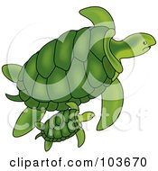 Royalty Free RF Clipart Illustration Of A Green Sea Turtle And Baby Swimming