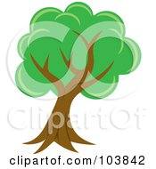 Royalty Free RF Clipart Illustration Of A Lush Mature Tree With Green Foliage And A Curved Trunk by Rosie Piter