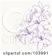 Purple Lilies And Splatters