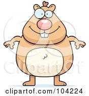 Chubby Hamster