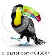 3d Toucan Bird Looking Back Over Its Shoulde