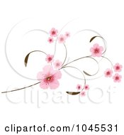 Royalty Free RF Clip Art Illustration Of Pink Cherry Blossoms On An Elegant Branch by Pushkin