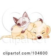 Siamese Kitten Napping On Top Of A Cute Puppy Dog