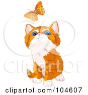 Cute Orange Kitten Looking Up At A Flying Butterfly