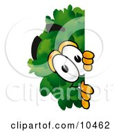 Clipart Picture Of A Tree Mascot Cartoon Character Peeking Around A Corner by Toons4Biz