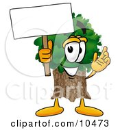 Tree Mascot Cartoon Character Holding A Blank Sign