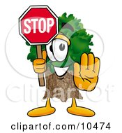 Tree Mascot Cartoon Character Holding A Stop Sign