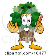 Tree Mascot Cartoon Character Holding A Pencil