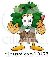 Tree Mascot Cartoon Character Holding A Pencil