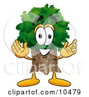 Tree Mascot Cartoon Character With Welcoming Open Arms