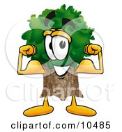 Tree Mascot Cartoon Character Flexing His Arm Muscles