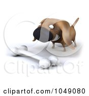 Royalty Free RF Clip Art Illustration Of A 3d Wiener Dog With A Bone