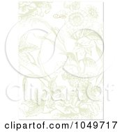 Royalty Free RF Clip Art Illustration Of A Faded Floral Invitation Background 2