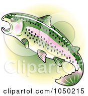 Rainbow Trout Over Green