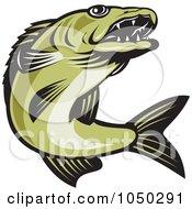 Royalty Free RF Clip Art Illustration Of A Green Walleye