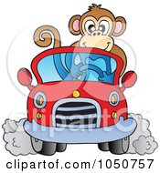 Monkey Driving A Car