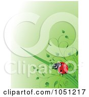 Green Spring Time Background Of A Ladybug On Grass