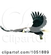 Royalty Free Vector Clip Art Illustration Of A Bald Eagle In Flight With Wings Spread Out by dero