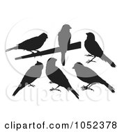 Royalty Free Vector Clip Art Illustration Of A Digital Collage Of Black Silhouetted Canaries