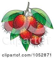 Royalty Free Vector Clip Art Illustration Of Ripe Red Rambutan Fruits by Lal Perera