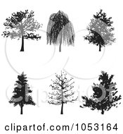 Royalty Free Vector Clip Art Illustration Of A Digital Collage Of Black Tree Silhouettes by KJ Pargeter