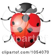 Royalty Free Vector Clip Art Illustration Of A Ladybug by vectorace