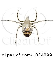 Royalty Free Vector Clip Art Illustration Of A Spider by vectorace