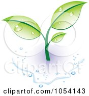 Royalty Free Vector Clip Art Illustration Of A Dewy Green Plant In A Puddle Of Water