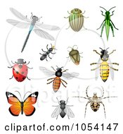 Royalty Free Vector Clip Art Illustration Of A Digital Collage Of Insects by vectorace #COLLC1054147-0166