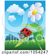 Royalty Free Vector Clip Art Illustration Of A Ladybug On A Daisy Leaf