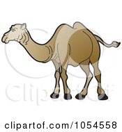 Royalty Free Vector Clip Art Illustration Of A Brown Camel 1 by Lal Perera