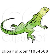 Royalty Free Vector Clip Art Illustration Of A Green And Yellow Lizard by Lal Perera