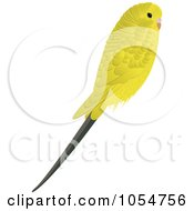 Royalty Free Vector Clip Art Illustration Of A Yellow Budgie